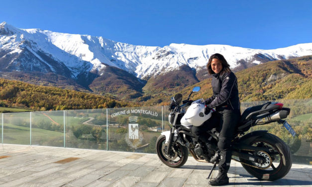 La mia moto: Yamaha FZ6